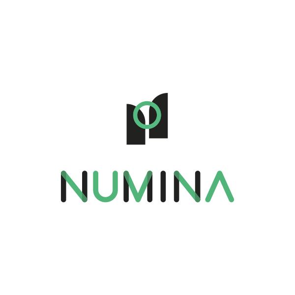 numina-website